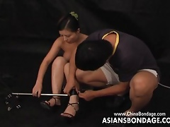Restrict Asian shrew gets the brush trotters locked relating to